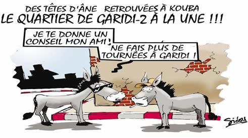 Même les ânes  ... dans L'Algérie de Bouteflika nes